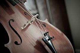 cello-110981__180
